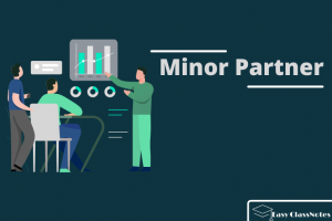 Read more about the article What is Meant by Minor Partner? The Complete Guide 2021