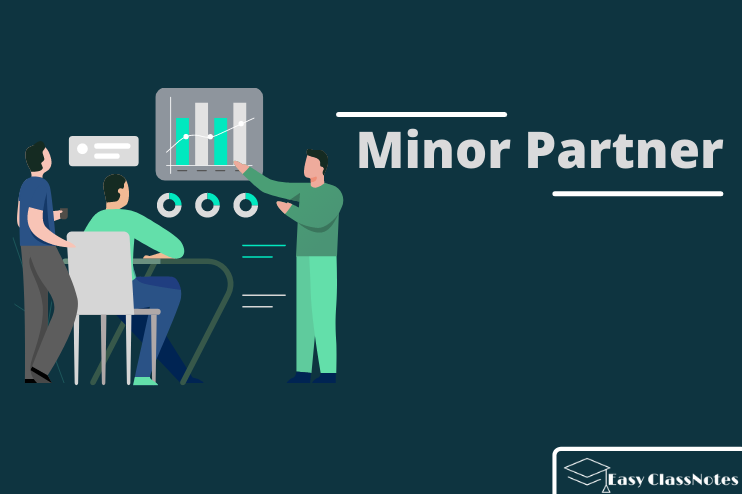 You are currently viewing What is Meant by Minor Partner? The Complete Guide 2021
