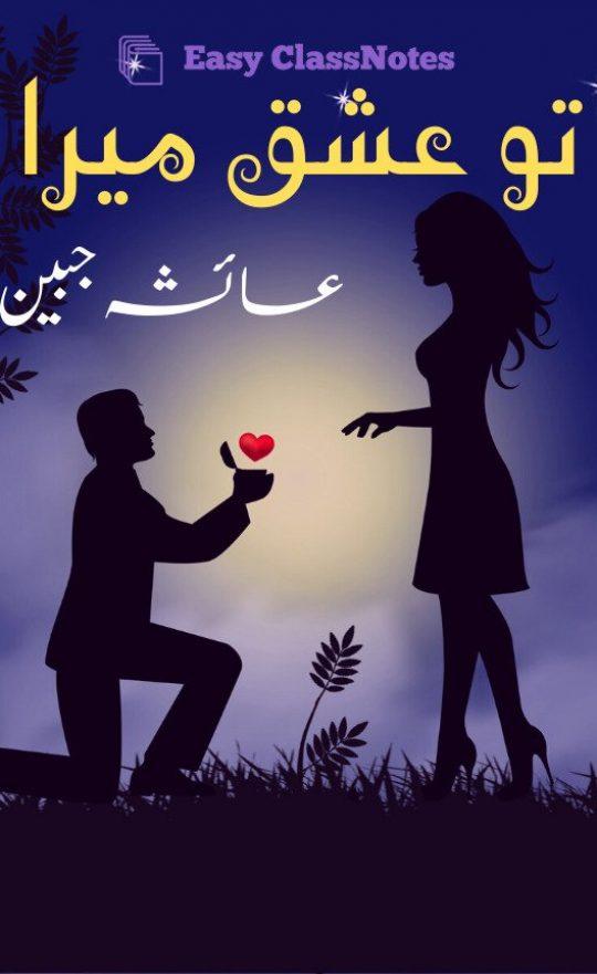 Tu Ishq Mera By Ayesha Jabeen Complete Novel Download