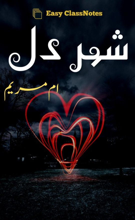 Shehr E Dil By Umme Maryam Complete Novel Download