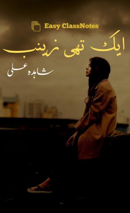 Aik Thi Zainab By Shahida Ali Complete Novel Download PDF