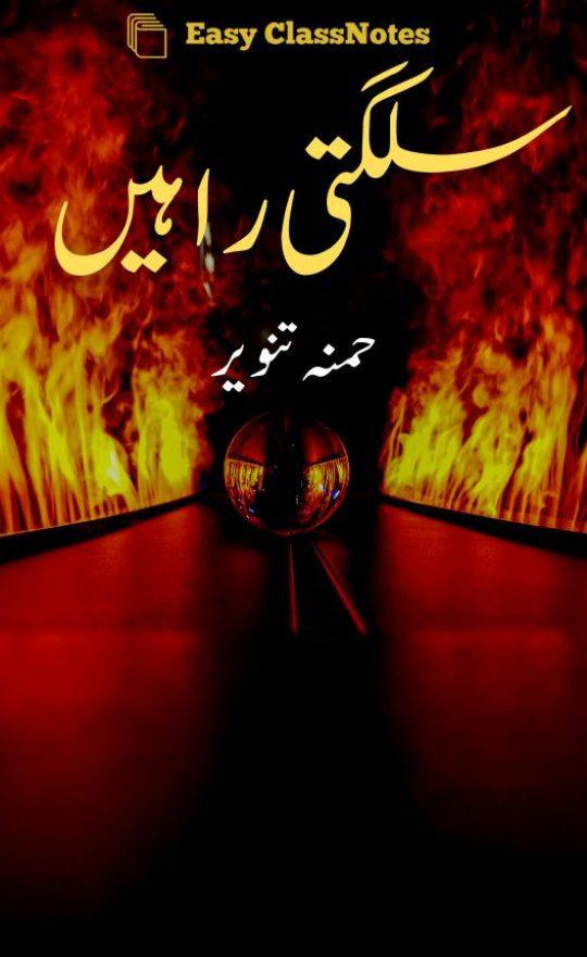 Sulagti Rahein By Hamna Tanveer Complete Novel Download